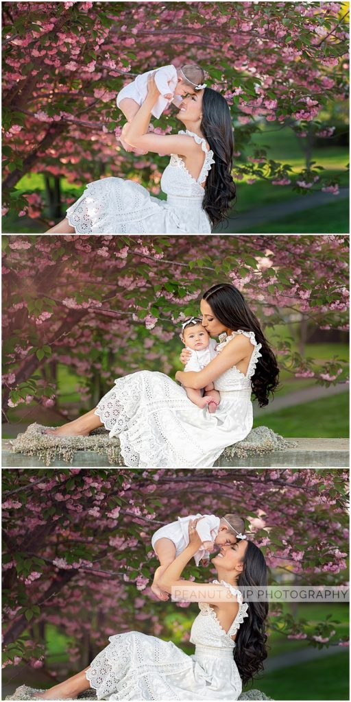 cherry blossoms baby family